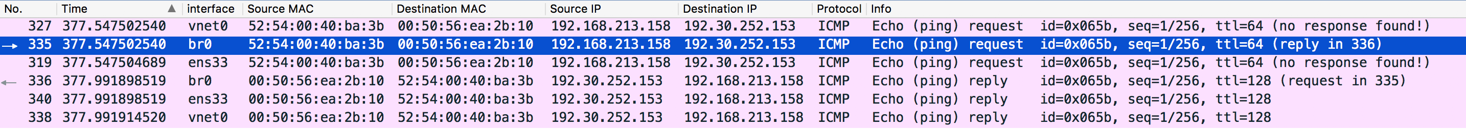 VM0 Ping Internet Wireshark Result